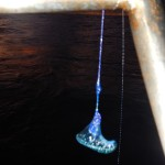 Look what we found dangling on our bathing ladder in the morning...