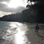 Viola and Bruno running on the beach