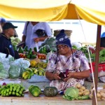 Lady selling vegetables in the market