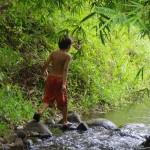 Der Weg zum Fluss