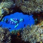A coral peephole.