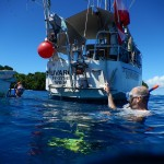 Start zur naechsten Schnorchelrunde - direkt vom Schiff aus