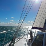 Fast sailing in the Moreton Bay
